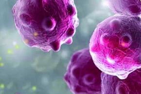 无机纳米防霉防水剂